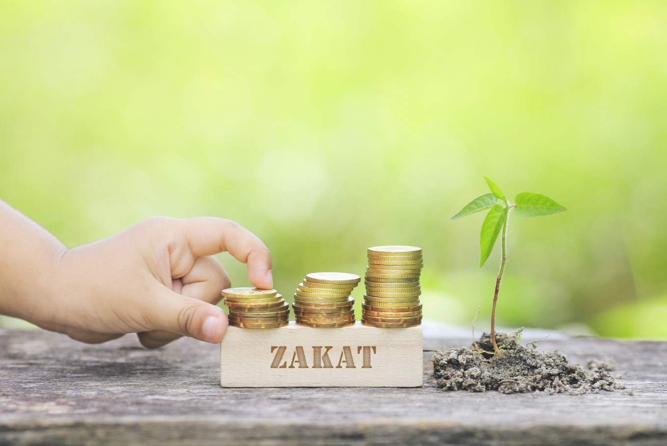Harmonizing tax and 'zakat'