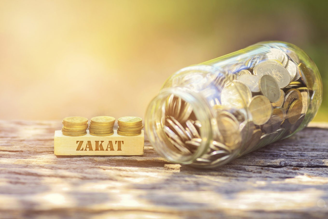 Nationalism and the obligation to pay zakat