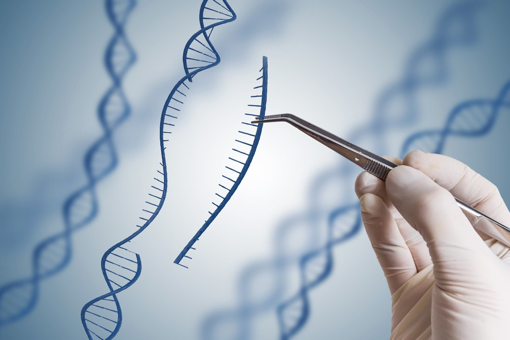 Researchers call for issuance of clear regulation on genome editing