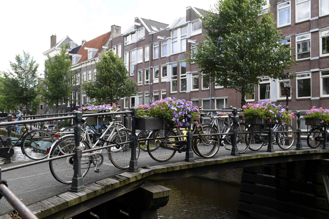 Dutch may soon pay workers using pedal-power