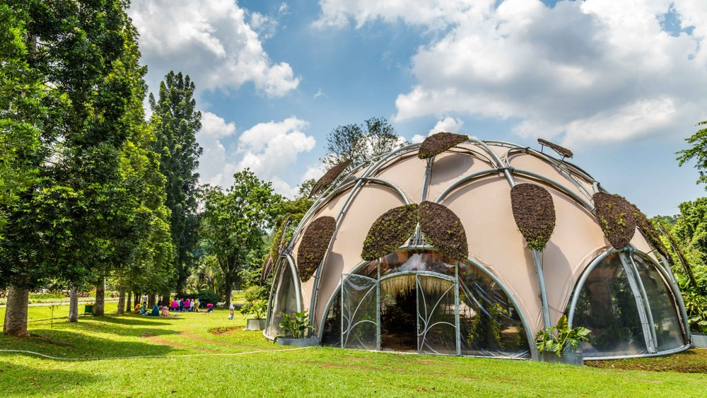 Bogor Botanical Gardens records highest visitor numbers in five years