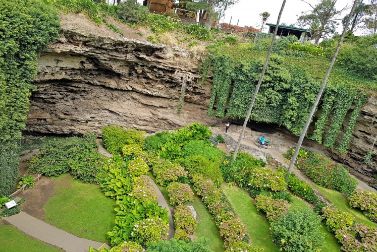 Perfect daylight: Visitors enjoy the greenery of Umpherston Sinkhole, also known as the Sunken Garden, in the afternoon.