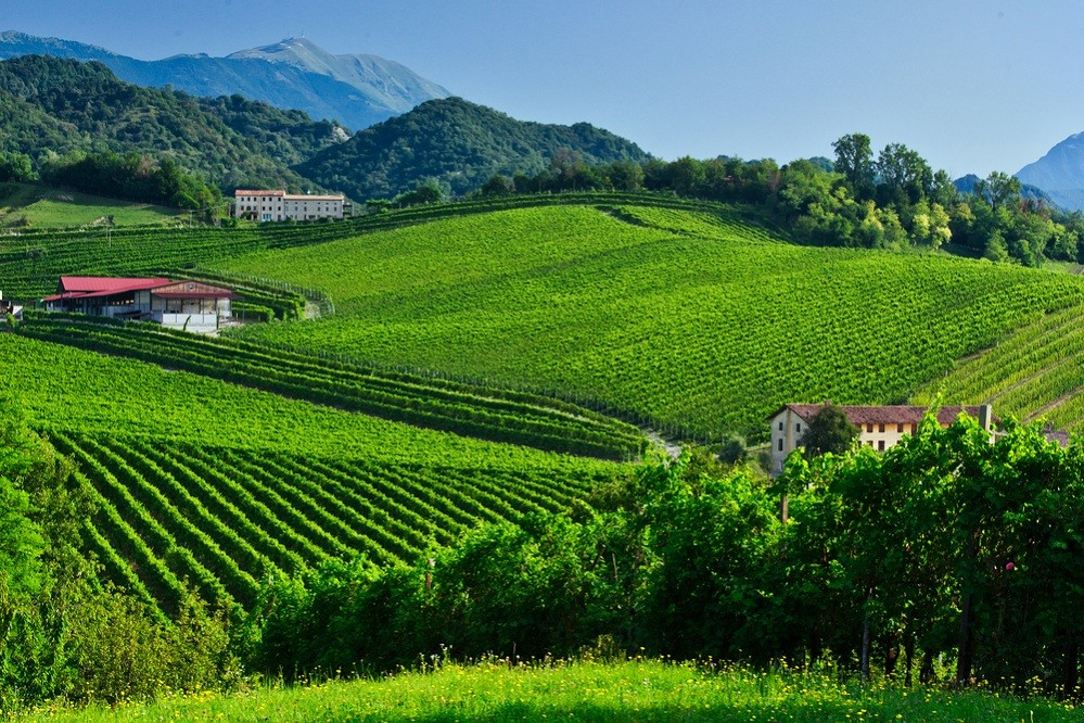 Italy's Prosecco hills join UNESCO World Heritage list