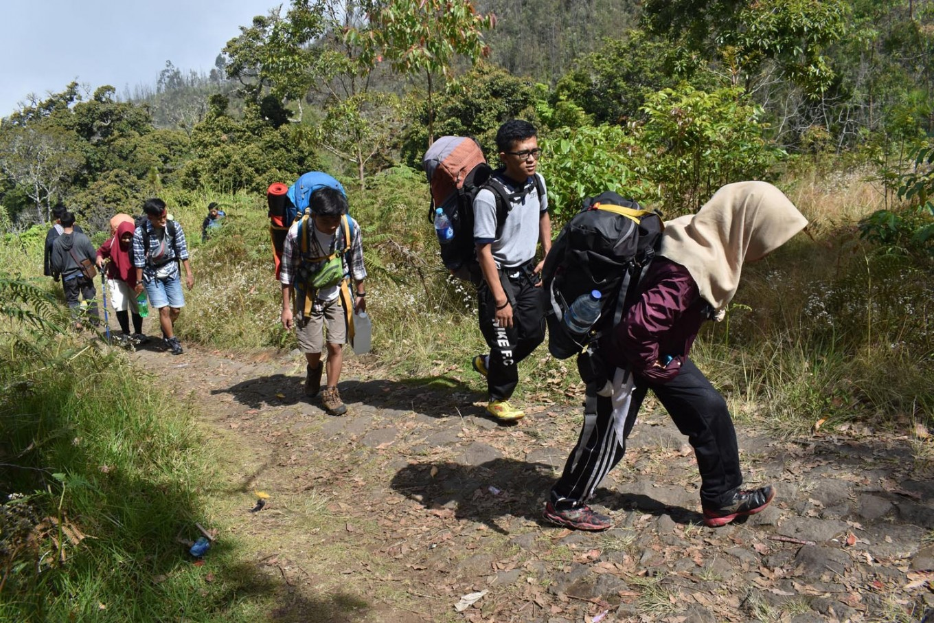 Fires force closure of hiking trails leading to three Central Java mountains