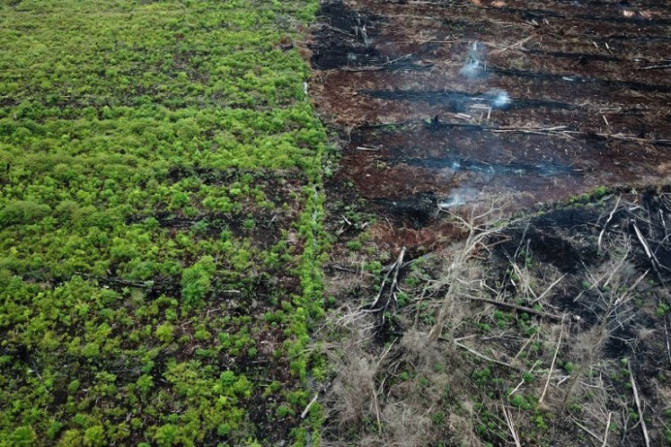 Hopes high permanent ban on forest, peatland clearance will stop deforestation