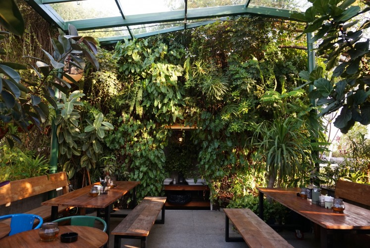 Secret passage: One of the green spots at Awan Lounge.