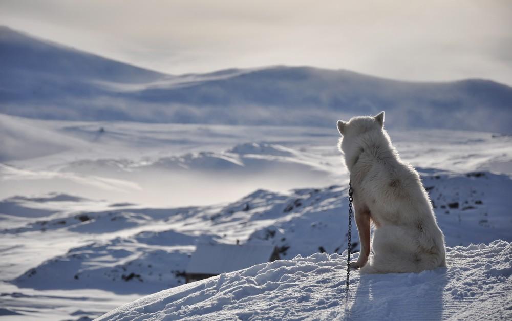 Inuit hunting grounds get UNESCO heritage status