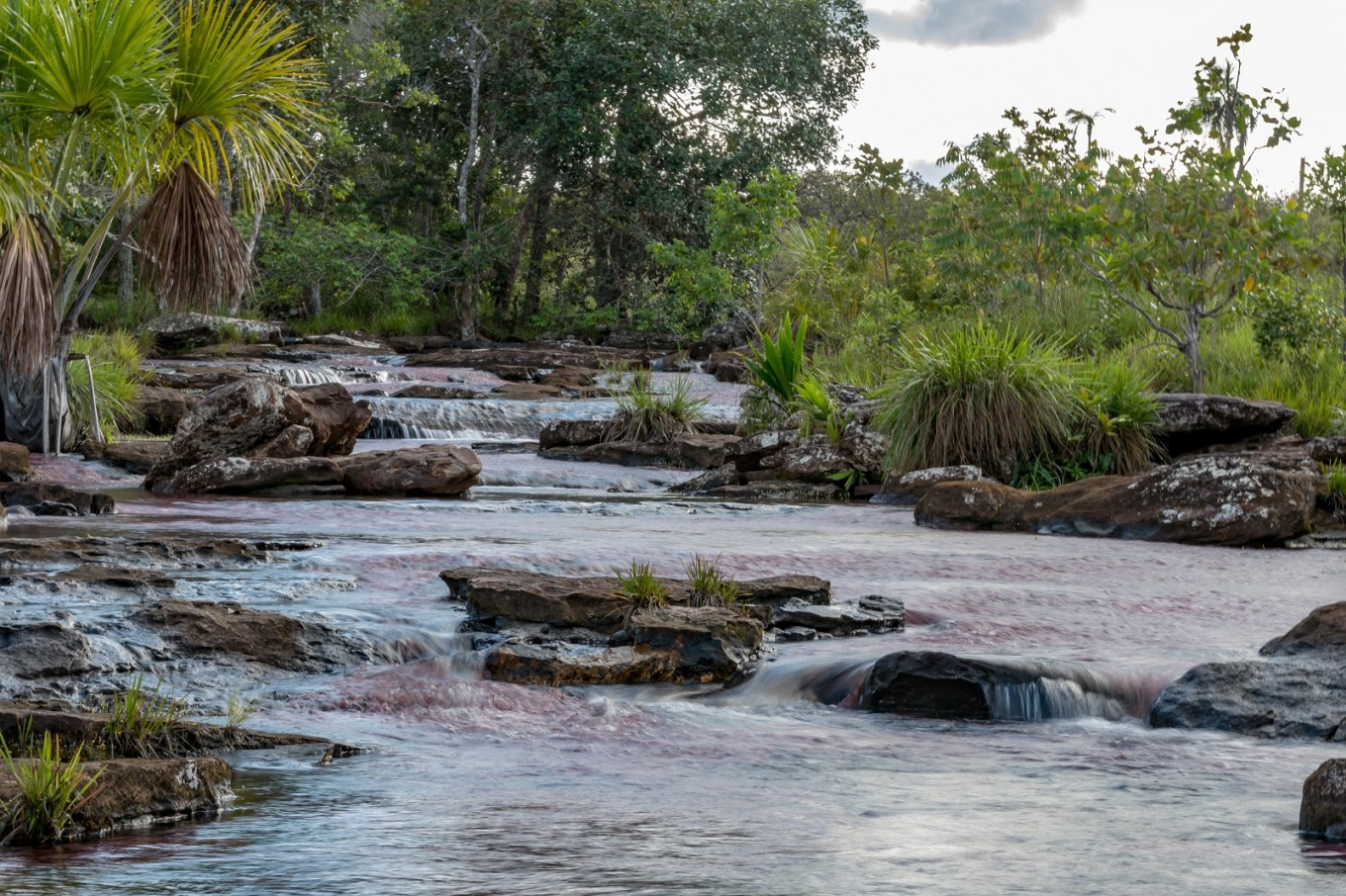 UNESCO marks Colombian national park for conservation
