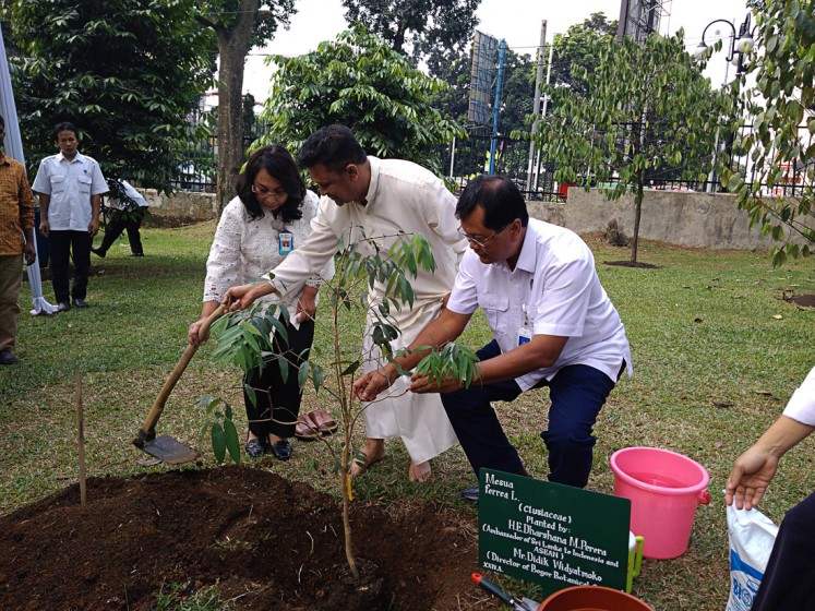 Conserving the earth: Indonesian Institute of Sciences (LIPI) deputy chairman for biodiversity sciences Enny Sudarmonowati (left), Didik Widyatmoko of the Bogor Botanical Gardens' plant conservation center (center) and Sri Lankan Ambassador to Indonesia and ASEAN Dharshana M. Perera plant a na tree at the Bogor Botanical Gardens on July 2.