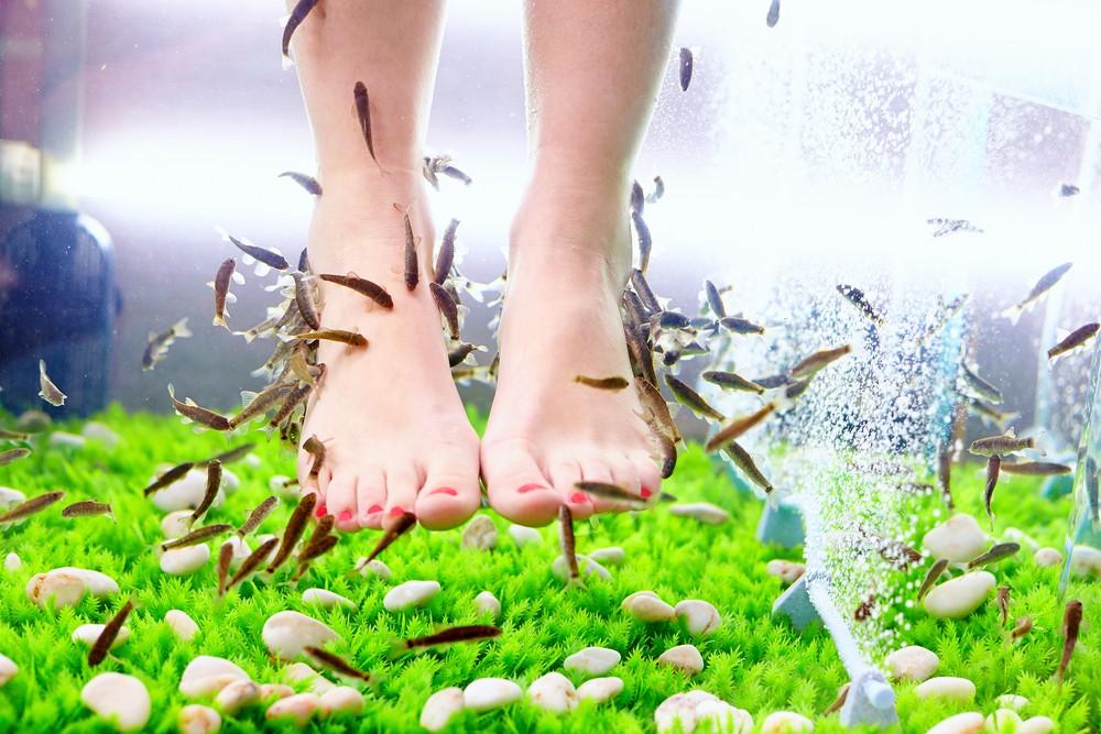 Woman loses toenails after fish pedicure