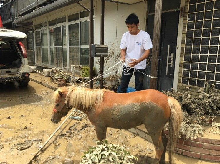 This handout picture taken on July 9, 2018 by the NGO Peace Winds Japan shows a miniature horse after being rescued from a rooftop following the recent flooding in the Mabicho area in Kurashiki, Okayama prefecture. The miniature horse who survived deadly floods by swimming to a rooftop has captured hearts in Japan, as the country tries to recover from record rains that killed at least 179 people.