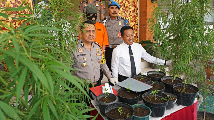 Illegal grows: Denpasar Police chief, Sr. Comr. Hadi Purnomo (left) shows marijuana trees seized from Bali fashion designer Nandi in a press conference on July 11, 2018.