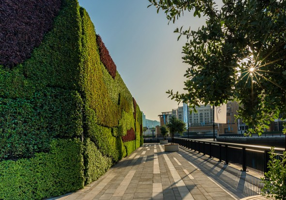 Dubai now hosts largest living green wall