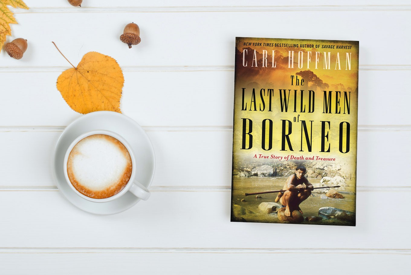 Book Review: 'The Last Wild Men of Borneo' by Carl Hoffman