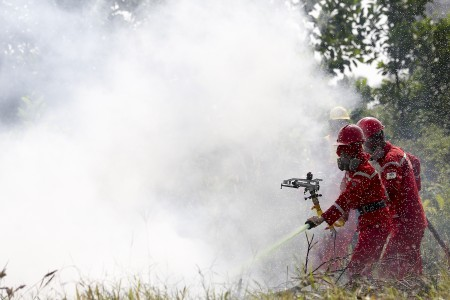 Jokowi emphasizes preventive measures in tackling forest, land fires