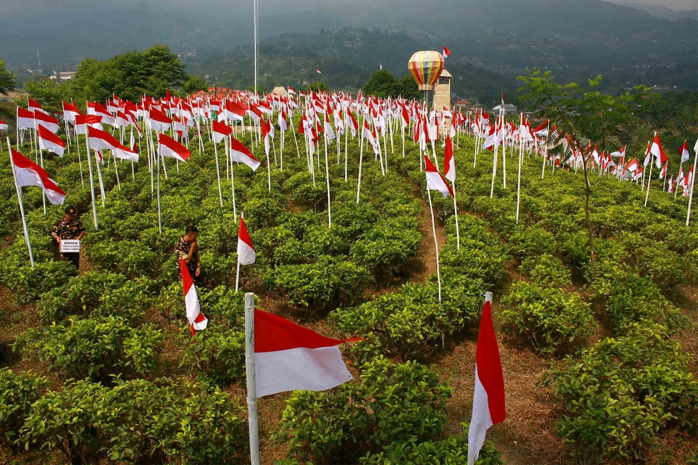 Visitors enjoy the tea plantation decorated with the national flags. JP/Maksum Nur Fauzan