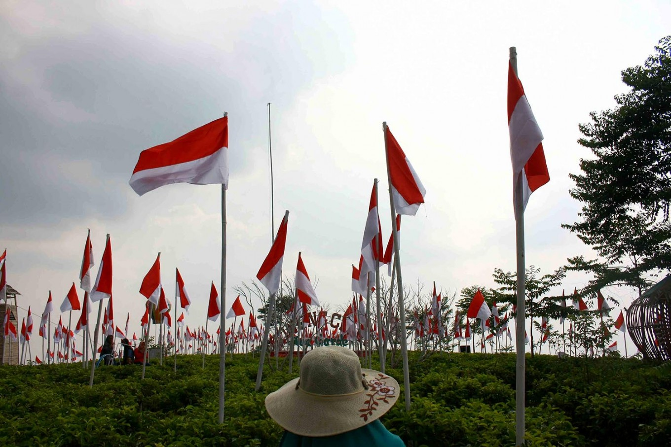A total of 1,945 Indonesian flags are hoisted at the peak of Mount Cilik. JP/Maksum Nur Fauzan