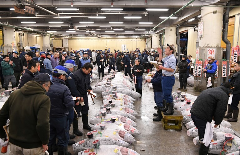 Tsukiji fish market hosts last tuna auction viewing before move