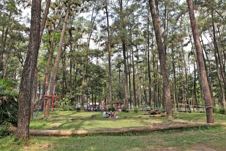 Under the pine trees: Palembang residents and tourists enjoy a picnic in the Punti Kayu tourism forest, which offers green scenery and tranquility.