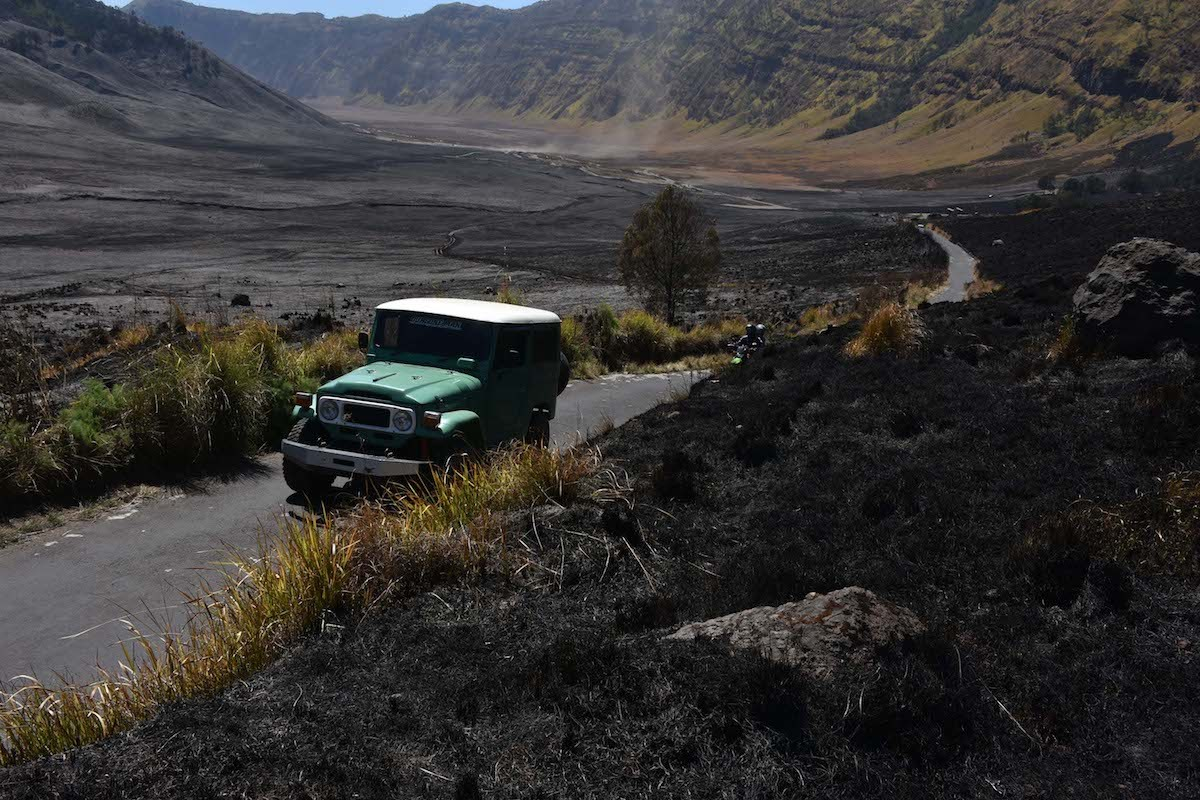 Tourists see blackened Bromo savannah after fire