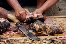 Fair shares: A man from Bonokeling tribal community cuts a goat head into tiny pieces after skinning it using fire. JP/Kukuh Sukmana Hasan Surya