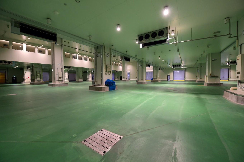 Operation Tsukiji: Tokyo battles rats as iconic market shuts