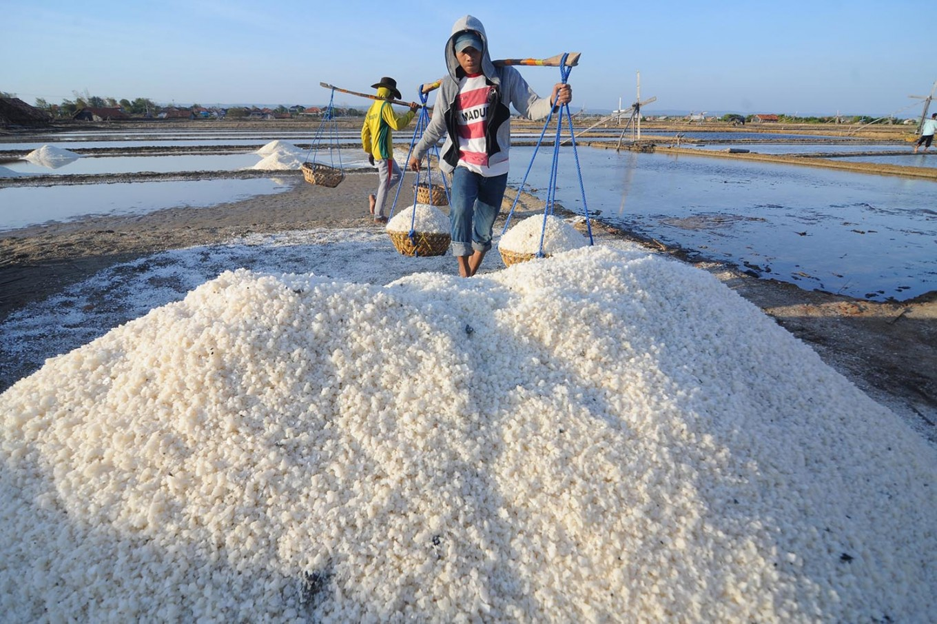 Minister blames 'excessive' imports for salt price drop