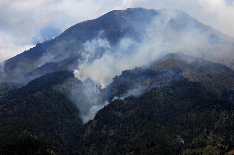 Fires on mounts Arjuno, Welirang blamed on hunters