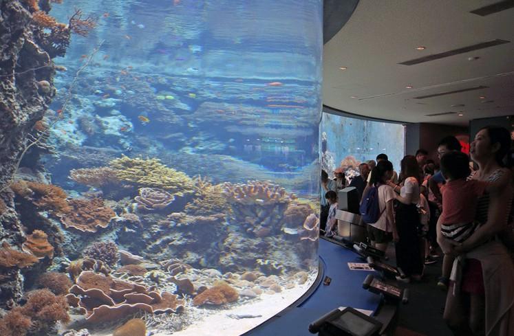 Living rocks: Visitors marvel at manifold coral reefs in the Okinawa Churaumi Aquarium.