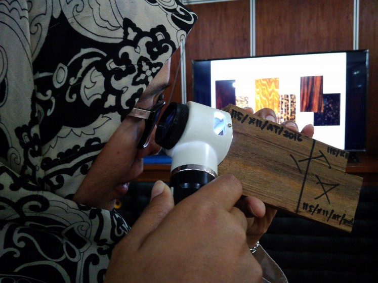 Wood researcher Ratih Damayanti examines a wood specimen sample with a magnifying tool.