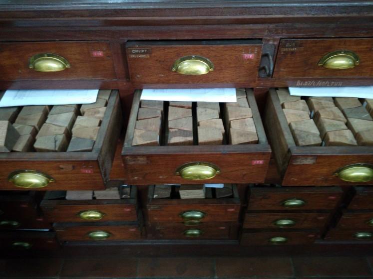 Wood specimens in Xylarium Bogoriensi, Bogor.