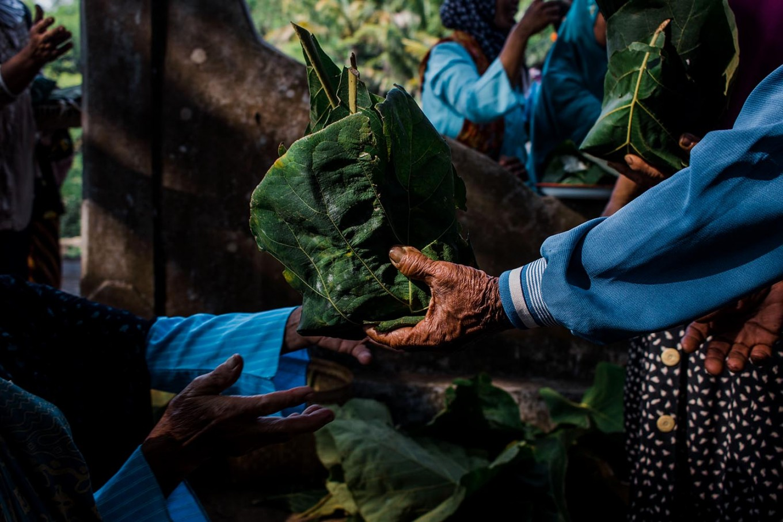 Food is wrapped in teak leaves. JP/Anggertimur Lanang Tinarbuko