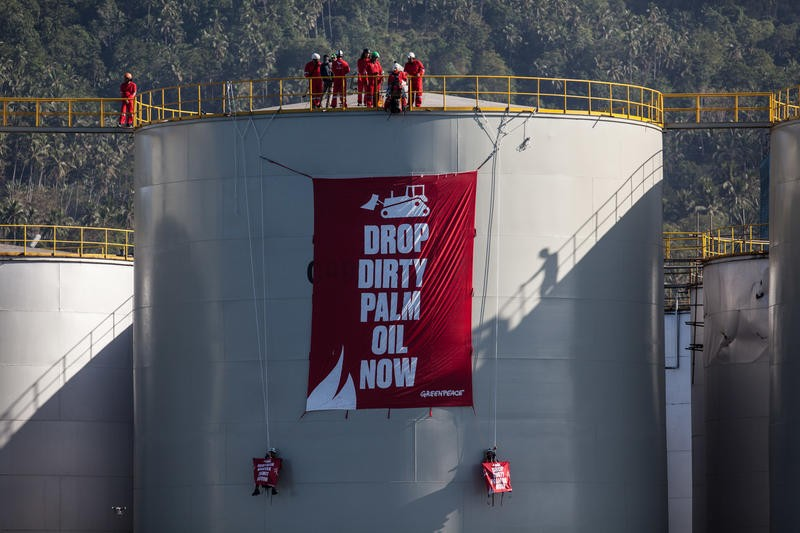 Greenpeace activists try to sabotage Indonesian economy