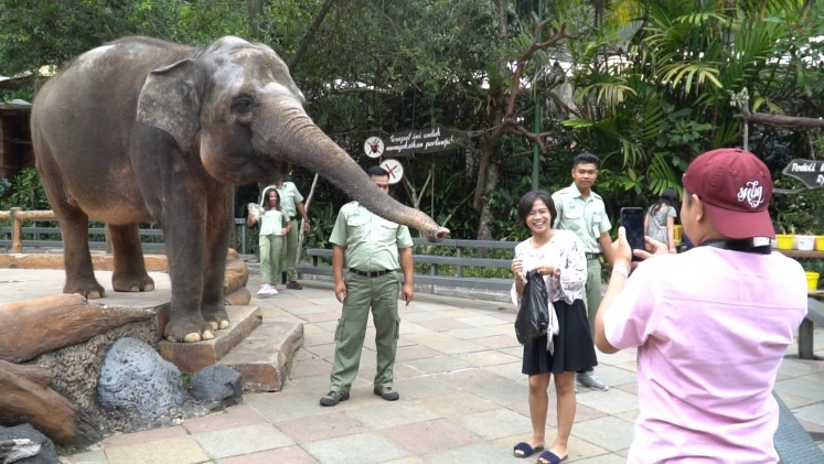 Elefant shows are one of the attractions.