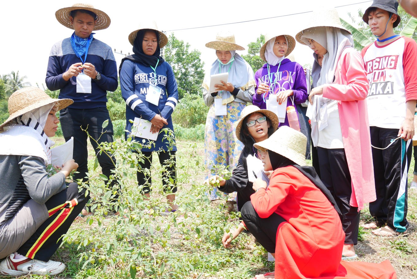 Re-introducing farming to the young people in Borneo