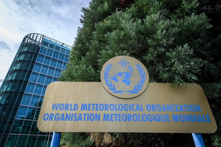 'Moderate to strong' La Nina this year: UN