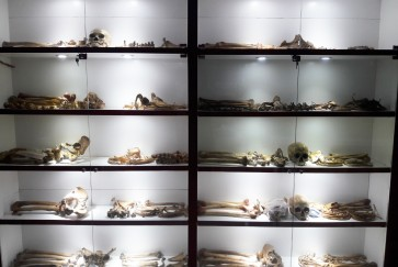 Surabaya museum of death highlights Indonesian funeral traditions