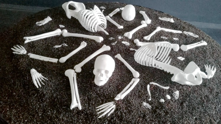 Circle of life: Maradita Sutantio has arranged skeletons in a mandala-like shape in After the Promised Land.