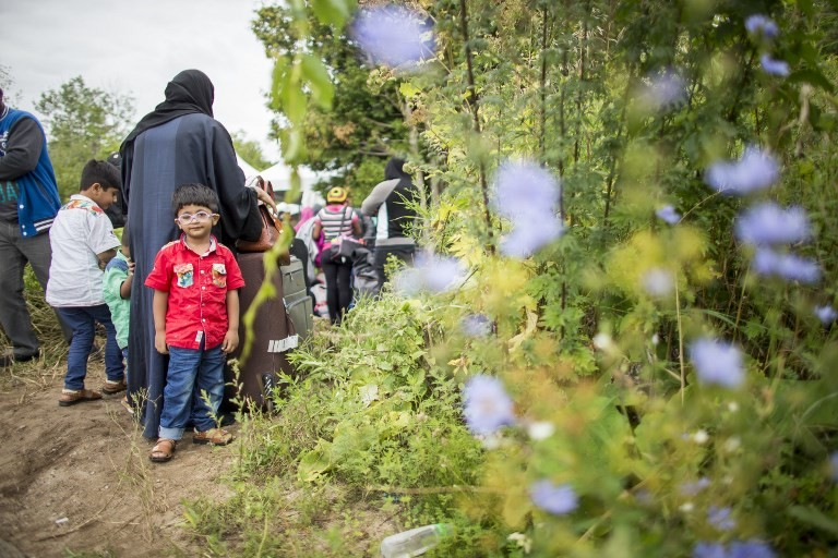 Canada planning to increase expulsions of illegal immigrants: Report