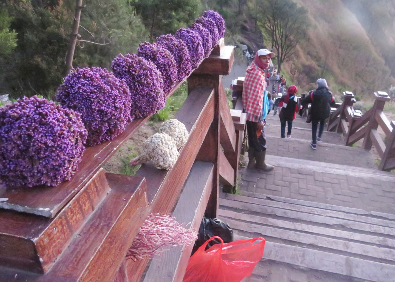 Edelwiss tourist villages to open in Bromo National Park
