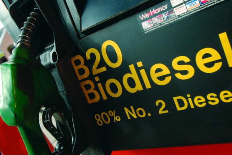 Producers call on government to implement B30 biodiesel policy