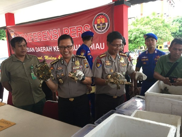 Police foil attempt to smuggle protected birds, turtles to Malaysia