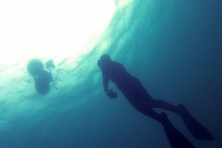 Govt should reassure public of health, safety to boost diving tourism: Association