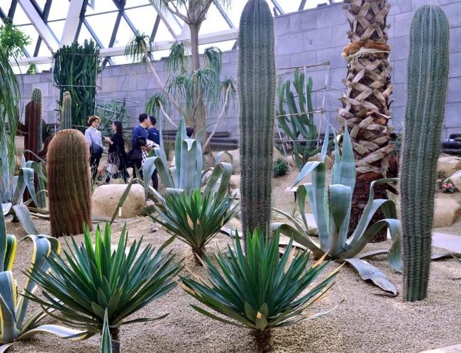 Botanical garden opens in Seoul