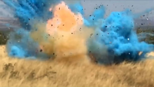 It's a boy -- and a massive wildfire at US gender reveal party