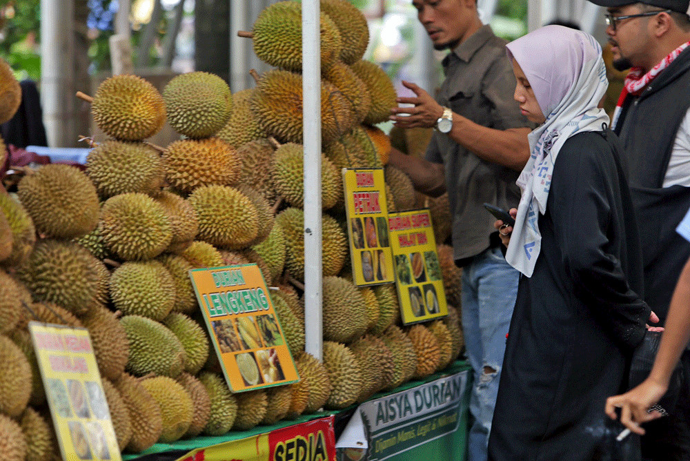 'King of fruit' reigns as durian festival gathers crowd