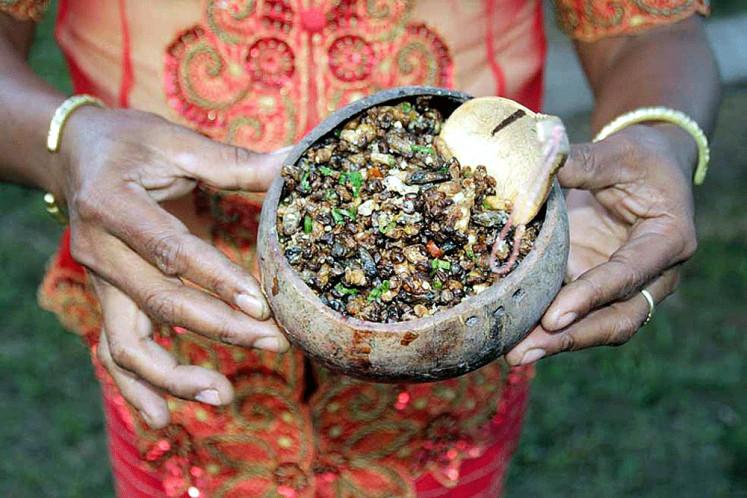 Luat Sarang Lebah (Kupang, East Nusa Tenggara) by Silvania Stella Epiphania Mandaru