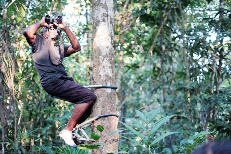 Closer look: Alex Waisimon of the Isio Hill's Bird Watching camp invites bird lovers to admire the beauty of Papua's endemic birds in the Grime Hill forest.