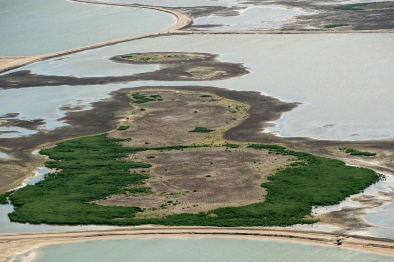 Dutch build artificial islands to bring wildlife back