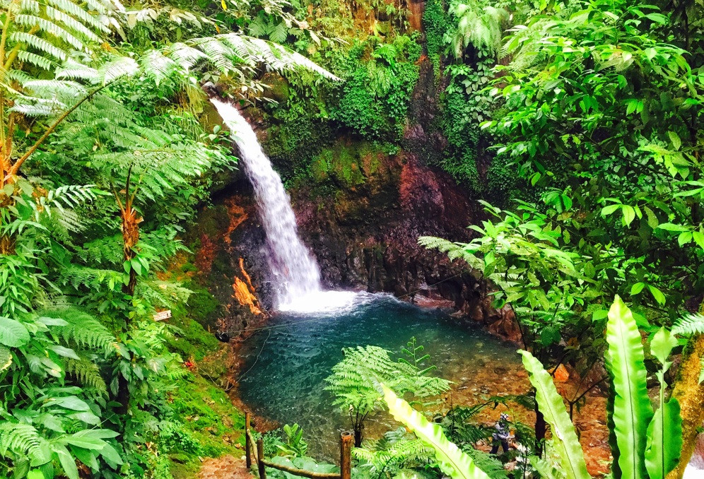 When in Bogor, Malasari village is tourist gem worth exploring